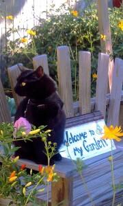 Edgar in the garden 2012